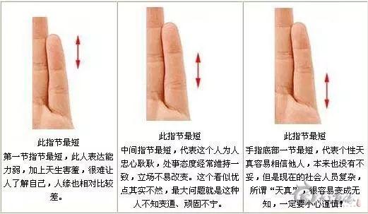相术|从小指指节长度看性格运势
